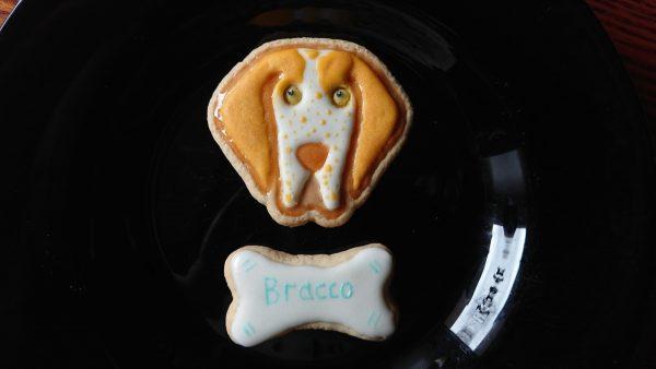 Formine biscotti per cani animali bracco italiano